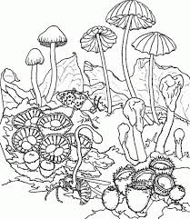 108 coloring images coloring books coloring