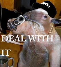 Anteater Meme - deal with it i m an anteater know your meme