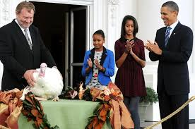 gobble obama spares two turkeys from the chopping block ny daily news