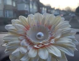Vw Beetle Flower Vase Short Stemmed 13cm Gerbera Flower With Pearl Centre Ideal For Vw