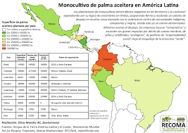 America Latina Map by Expansion Of Oil Palm Plantations As State Policy In Central