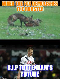 Tottenham Memes - leicester city vs tottenham hotspur imgflip