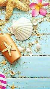 shell wallpaper sand and shells g phone pinterest shell wallpaper and