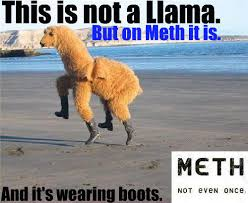 Meth Not Even Once Meme - meth not even once meme by waxevo memedroid