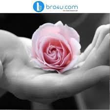 best flower delivery service 24 best flower delivery images on flower delivery