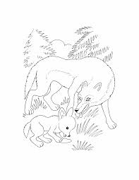 wild animal coloring pages creativemove me