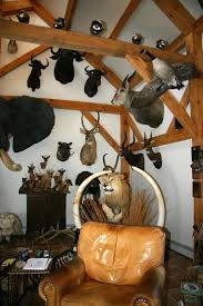 Hunting Themed Home Decor by Best 25 Trophy Rooms Ideas Only On Pinterest Rustic Man Cave