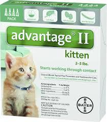 advantage ii flea treatment for kittens 2 5 lbs 4 treatments