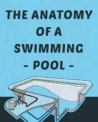 Anatomy And Physiology Pick Up Lines Anatomy Of A Swimming Pool