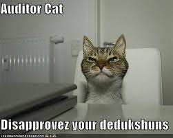 Good Luck Cat Meme - cpa test jokes and memes magoosh cpa blog