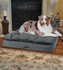 Costco Memory Foam Dog Bed Furniture Using Costco Dog Beds For Lovely Pet Furniture Ideas
