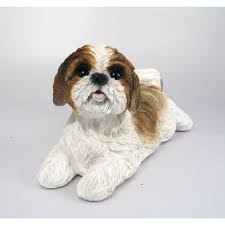 shih tzu brown white real ornament by arts ornaments