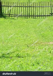 green grass yard stock photo 394450 shutterstock