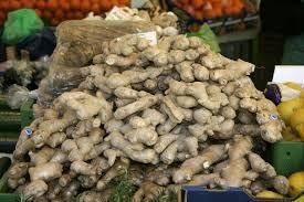 native ginger plant list of root vegetables