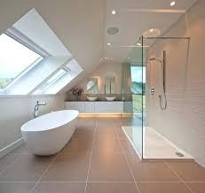 splendid cave bathroom decorating ideas bathroom ideas easywash club