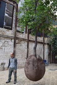 our guide in jaffa with a jaffa orange tree suspended in