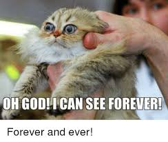 Forever And Ever Meme - ohgodi can see forever forever and ever meme on esmemes com