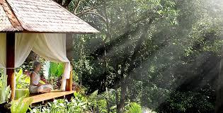 the ultimate retreats for christmas u0026 new year getaways