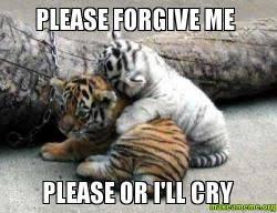 Forgive Me Meme - please forgive me please or i ll cry make a meme