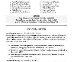Social Work Resume Template Download Work Resume Examples Haadyaooverbayresort Com