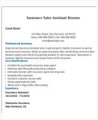 Life Insurance Agent Resume Best Sales Resume Free U0026 Premium Templates