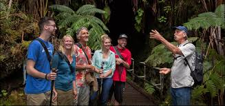 hawaii tours volcano u0026 summit tours big island tours hawaii
