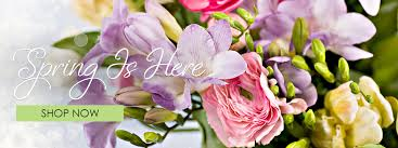flowers for shelbyville florist flower delivery by flowers for keeps