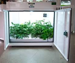 northern lights grow box bc northern lights surrey vancouver hydroponic systems
