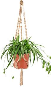 Simple Macrame Plant Hanger - 5 macrame plant hanger for spider plants how to dress up your