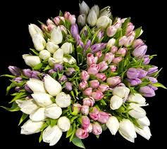 beautiful bouquet of flowers beautiful flower bouquets images free stock photos