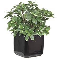 online stores for home decor 100 artificial plants for home decor bedroom ideas awesome