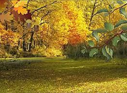 imagenes animadas de otoño tarjetas animadas postales para el comienzo del otoño imágenes