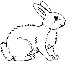 rabbit print pictures printable coloring pages kids craft easter