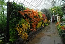 Ny Botanic Gardens New York Botanical Garden Orchid Expo 2012 Mur Vegetal