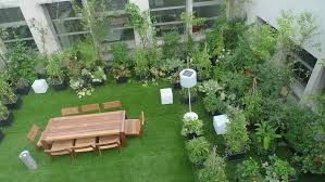 roof gardening tips techniques roof garden design ideas india