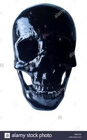 halloween skull background terrifying halloween skull on white for october holiday background