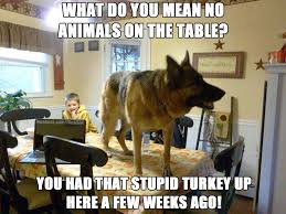 Funny German Shepherd Memes - animals are not allowed on the table what breed is it