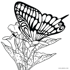 coloring pages printable coloring pages of butterflies free
