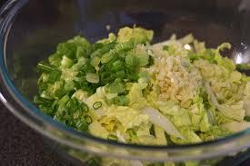 napa salad spicy korean napa cabbage salad fresh kimchi season with spice