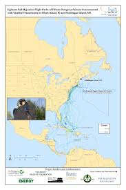 Map Of Caribbean Islands And South America by Raptors Of Block Island Biodiversity Research Institute