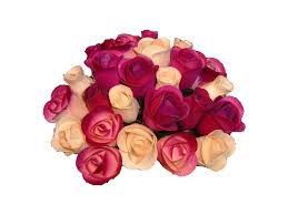 Wooden Flowers Color Chart Wooden Roses Wholesale Wooden Roses Wood Flowers