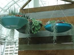 trendy new ideas for the indoor garden that bloomin u0027 garden