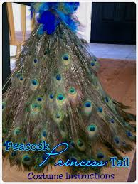 Child Peacock Halloween Costume Peacock Articulated Tail Costume Instructions Child