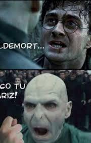 memes de harry potter se祓orita di angelo wattpad