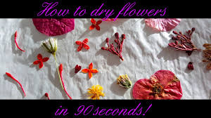 Dry Flowers How To Dry Flowers In 90 Seconds Youtube