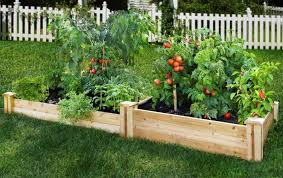 Small Vegetable Garden Ideas Small Vegetable Gardens Webzine Co
