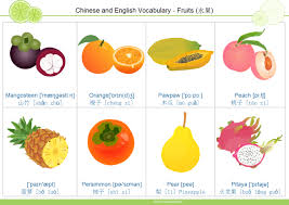 fruit flashcard free fruit flashcard 3 templates