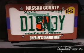 Florida Vanity Plate Cost A Personalized Disney Themed License Plate Can You Afford One