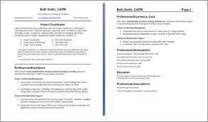 Two Page Resume Example Download Two Page Resume Sample Haadyaooverbayresort Com