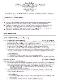 Sap Sd Experience Resumes Sample Sap Resume Technical Consultant Resume Samples Sap Cv